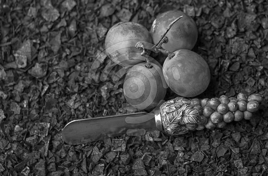 Four grapes on course salt