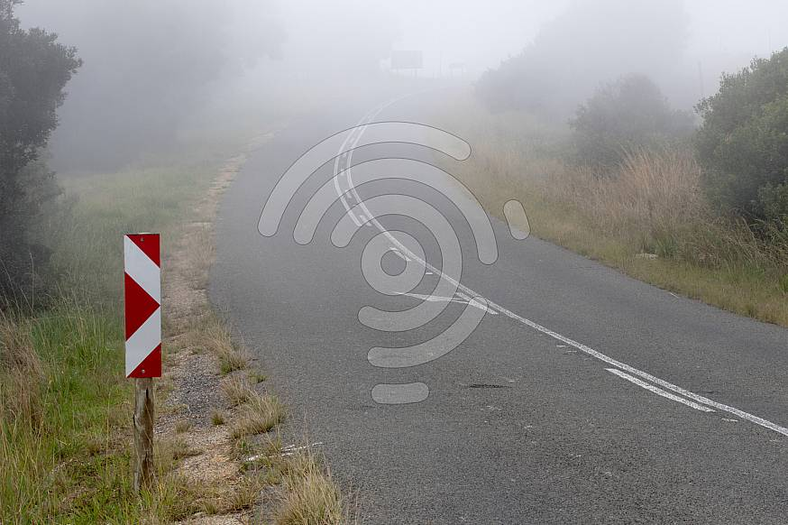 Misty bend in the road