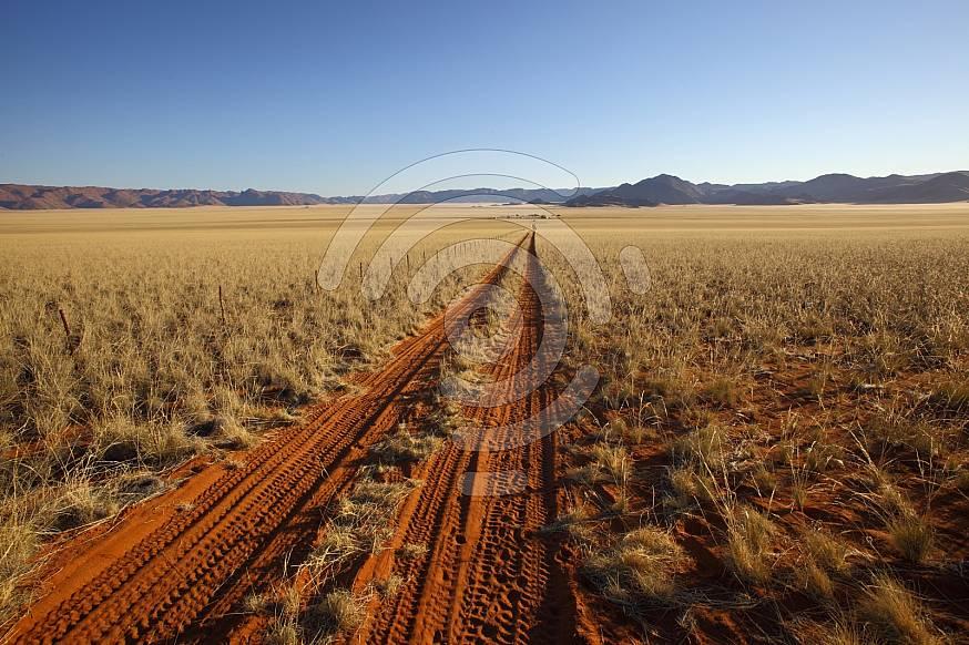 Tyre track in an open field