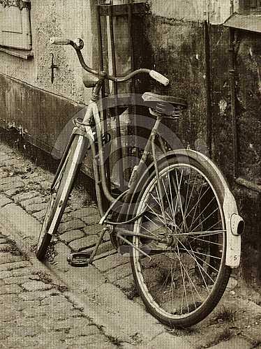 #19246